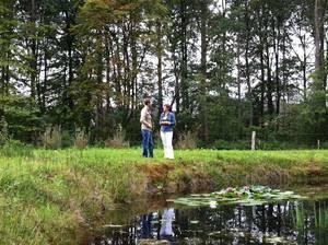 wandelcoaching natuurgebieden2
