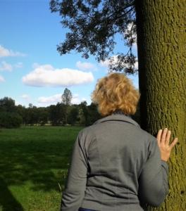 bomen knuffelen2